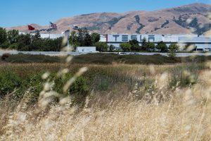 Tesla sues Alameda County to force California factory reopening